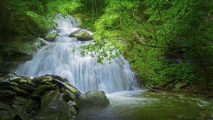 Upper Shamokin Falls