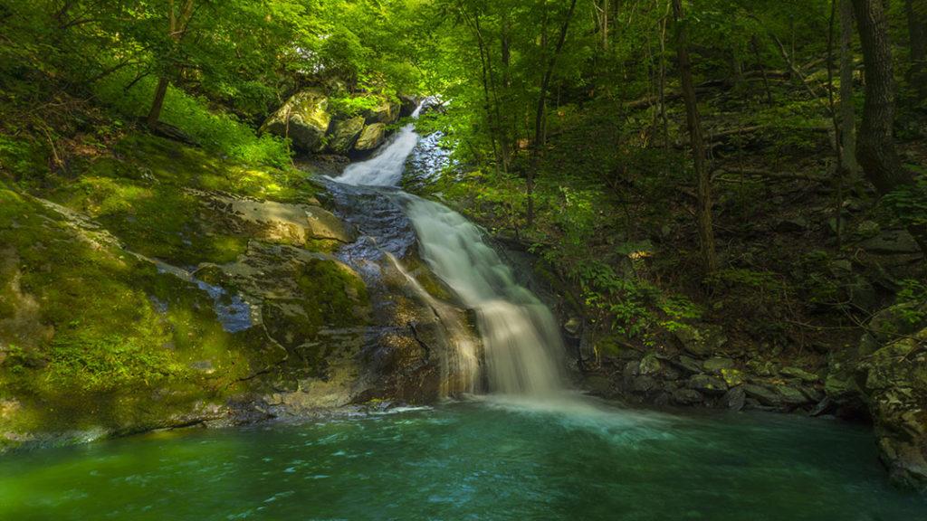 Lower Shamokin Falls