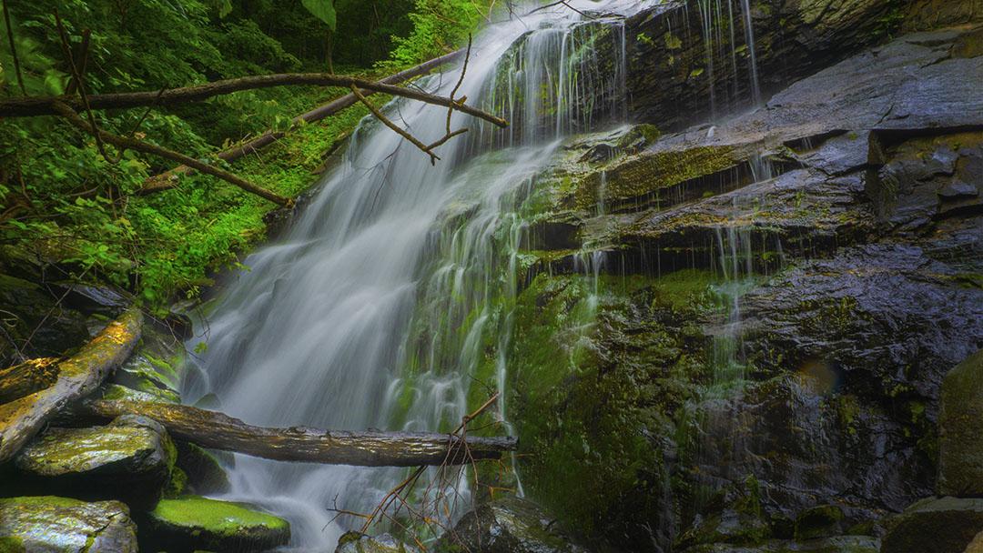 Lower Shamokin Main Falls
