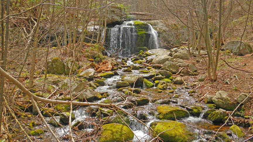 Apple Orchard Falls Trail Views