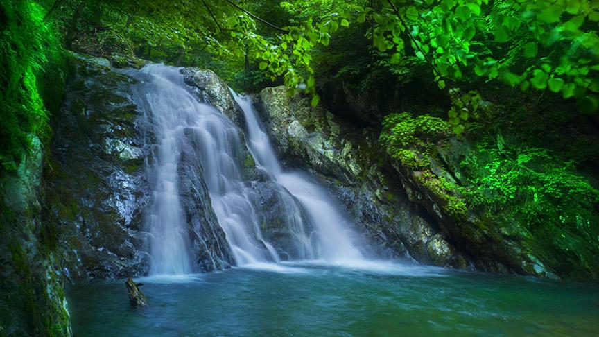 Cedar Run Falls #3