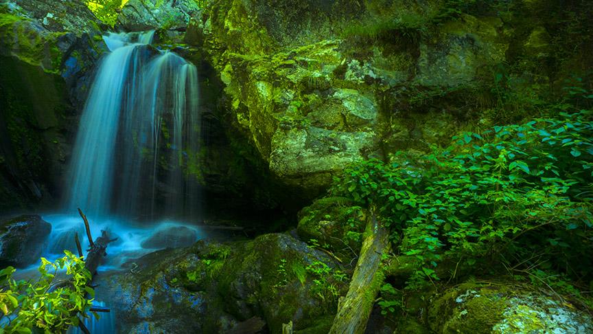 Falls of Naked Creek 3