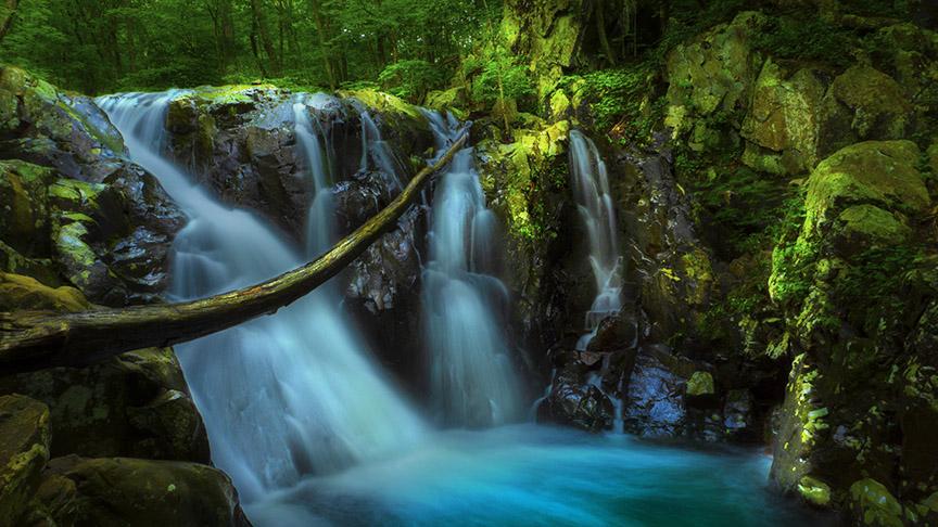 Rose River Falls #1