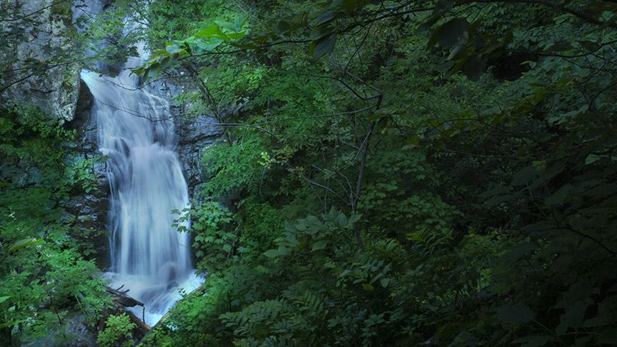 Whiteoak Canyon Falls #3