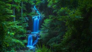 Doyles River Falls #1