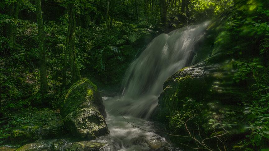 Falls of Dry Run #4