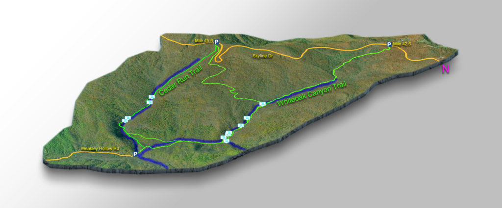 Map - All Trails - Cedar Run - Whiteoak Canyon