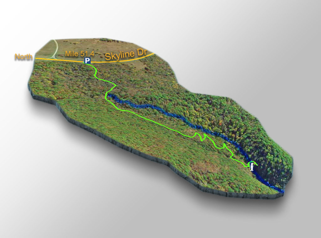 Trail Map - Lewis Falls