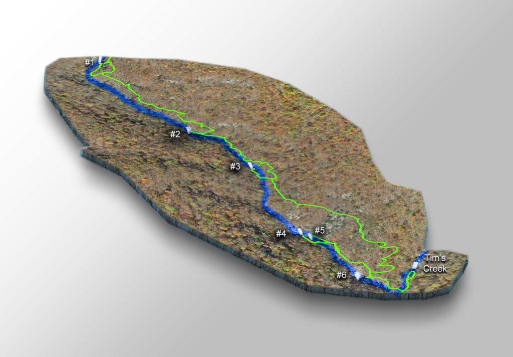 Trail Map - Whiteoak Canyon Falls