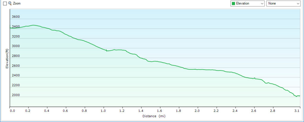 Profile - Overall Run From Skyline