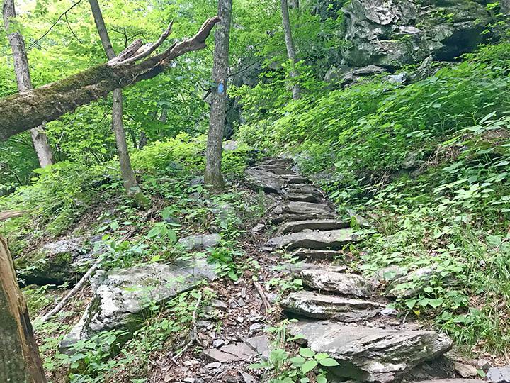 South River Falls - Base Trail
