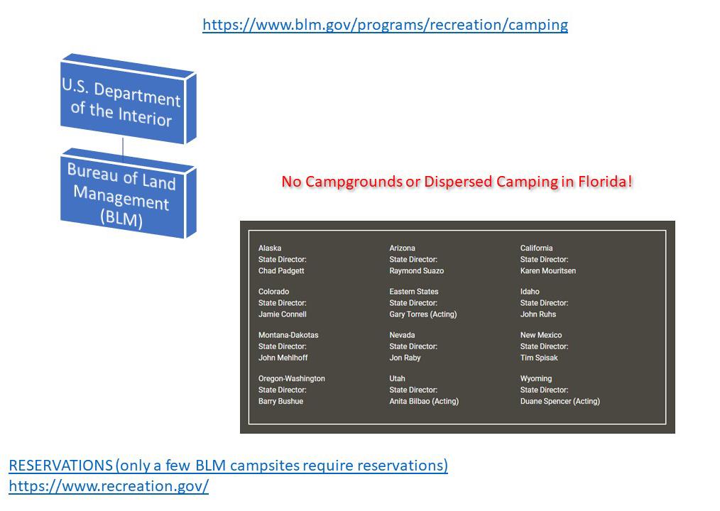 BLM Organization