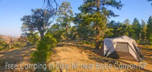 Dixie NF Free Camping Guide