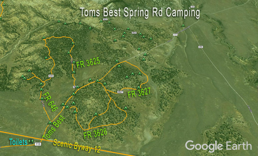 Dixie NF Camping Map Toms Best Spring Rd