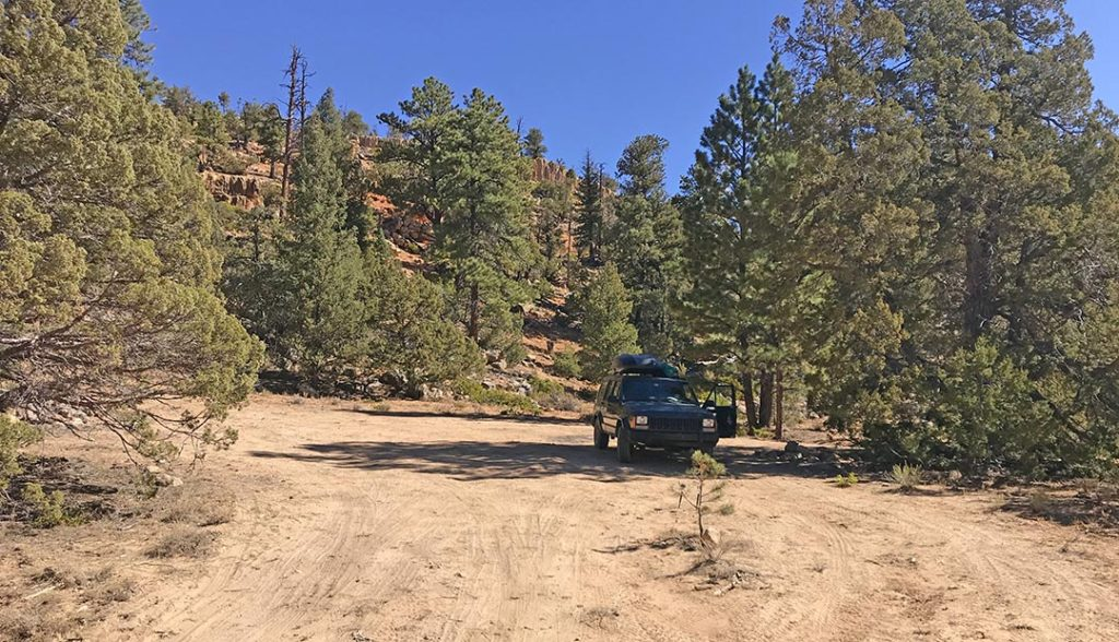 Dixie NF Campsite Corral Hollow Rd