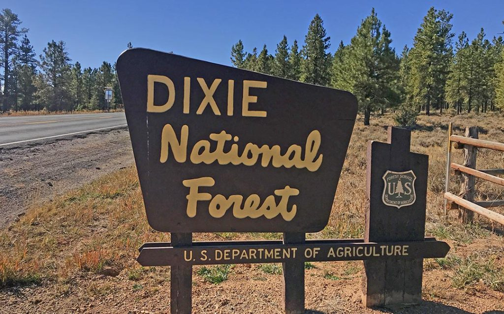Dixie NF Sign
