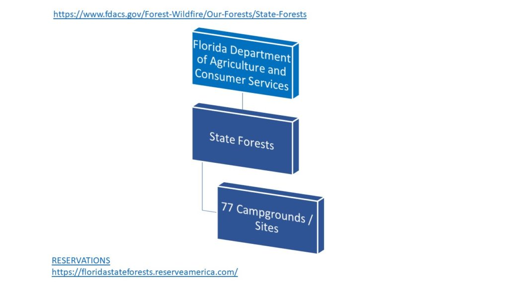 Florida Camping Org Chart - State Forests