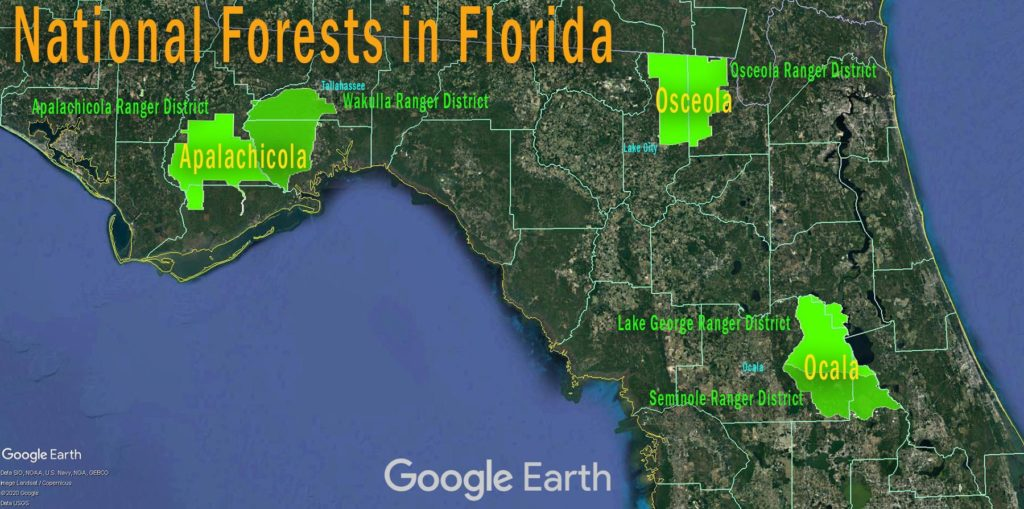 National Forest Map - Florida